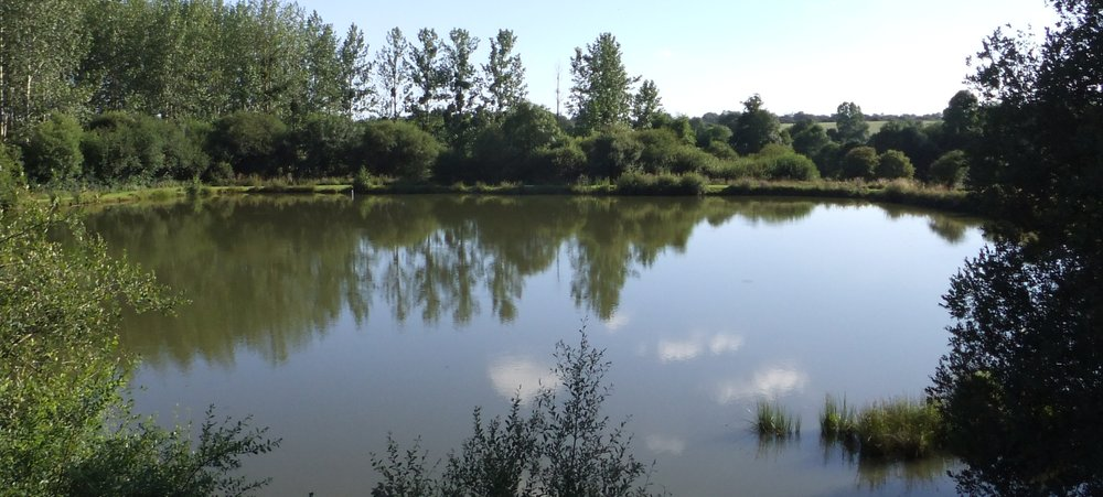 Our private fishing lakes for Private fishing lakes